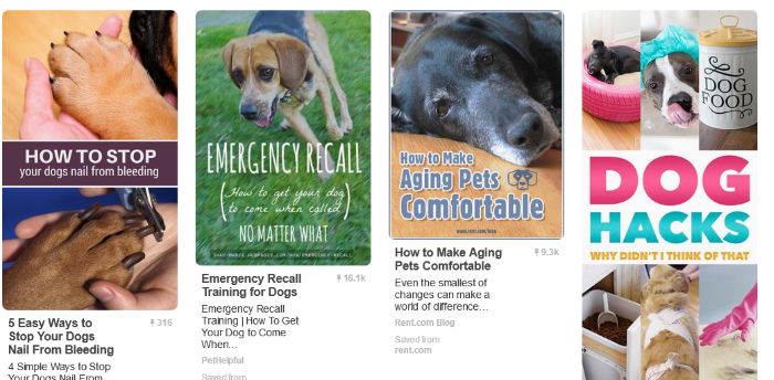 10 Boards for Dog Lovers to Follow on Pinterest